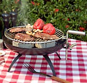 tischgrill mini quick grill sandwichmaker waffeleisen feuerschalen schwenkgrills dutch oven. Black Bedroom Furniture Sets. Home Design Ideas